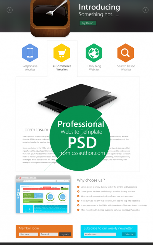 Professional-Website-Template-Design-PSD-from-CSS-Author1