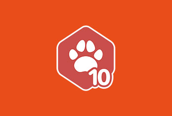 envato-author-level-10-badge