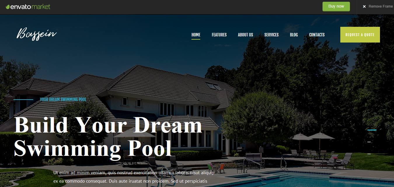 bassein-pool-service-wordpress-theme